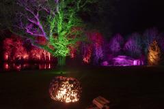 17_Rosemoor-lights