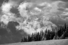 17_21_Olympic-NP