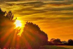 24_26_Rising-Sun